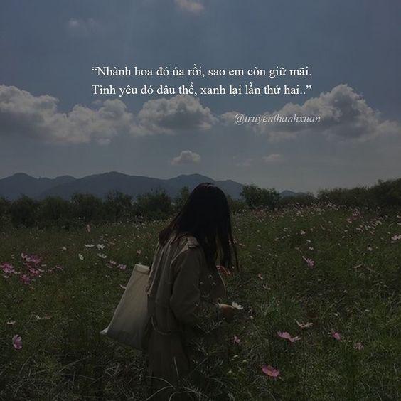 Status tình yêu lãng mạn ngắn gọn mà sâu lắng