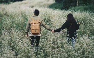 Khám phá những stt tình yêu vui khiến bạn thoải mái nhất