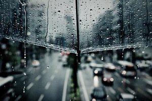 Khám phá những câu nói hay về mưa ý nghĩa nhất mọi thời đại