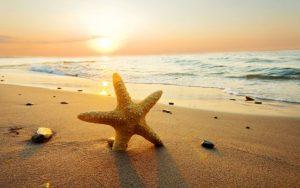 Chùm stt vui về biển hấp dẫn được bạn đọc yêu thích gần đây