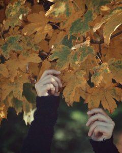 Tập thơ tình ngắn buồn bã cô đơn lạnh buốt tâm hồn