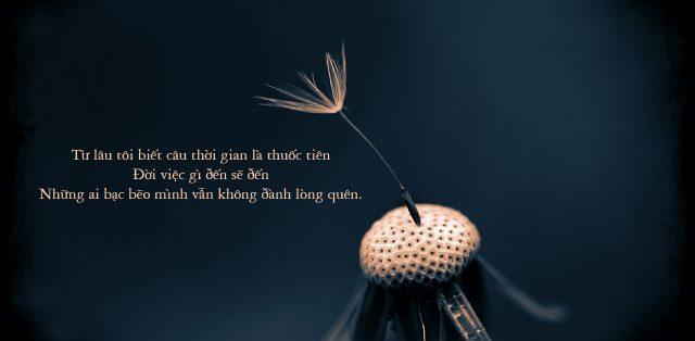 Những bài thơ cuộc đời bạc bẽo tê tái tâm hồn bạn đọc
