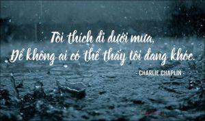 Top 199 bài thơ hay về mưa lay động triệu trái tim hay nhất