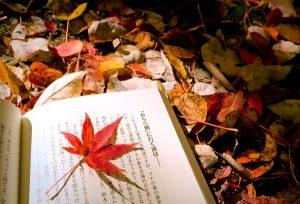 [Chùm] Thơ mùa thu nhẹ nhàng đi vào lòng người – Xin chào mùa thu