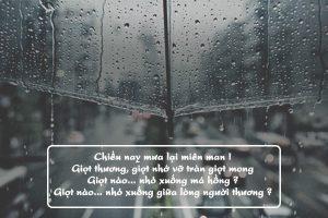 Tuyển chọn bài thơ về mưa tình yêu ấm áp hạnh phúc ngập tràn