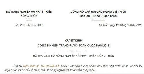Quyết Định 911/QĐ-BNN-TCLN 2019 công bố hiện trạng rừng toàn quốc