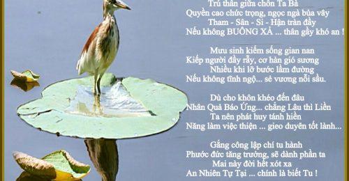 Suy ngẫm cùng chùm thơ đạo và đời hay, mang thông điệp ý nghĩa