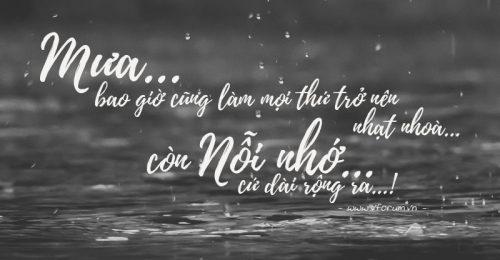 [HOT] Những stt hay về mưa đêm buồn bã cô đơn nhất