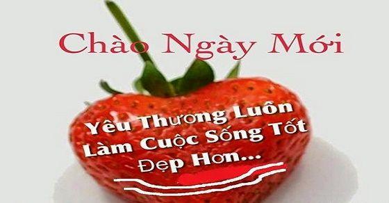 nhung-cau-chuc-buoi-sang-hay-5