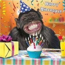 [BST] Hình ảnh chúc mừng sinh nhật hài hước troll bạn bè cực đã