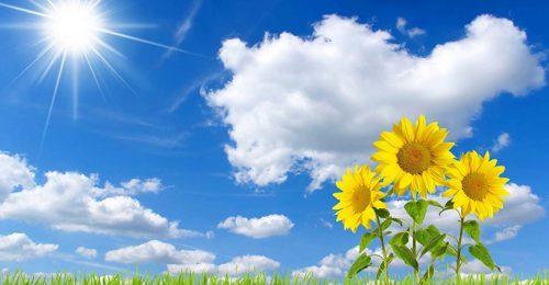 Tập hợp những stt dễ thương về nắng hay nhất bạn nên chia sẻ