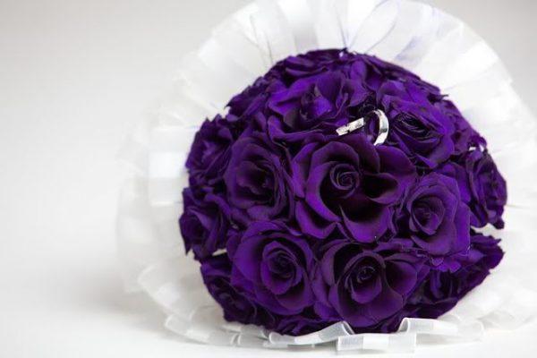 hình ảnh hoa đẹp-14