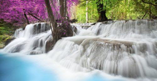 1001+ Ảnh thiên nhiên đẹp chất lượng cao [TẢI LÀM HÌNH NỀN]