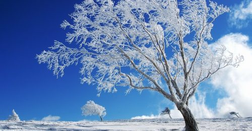 TOP 10 hình nền phong cảnh thiên nhiên đẹp nhất thế giới Full 4k