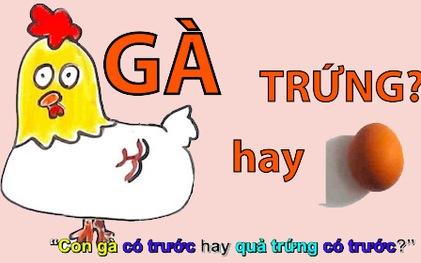 nhung-cau-do-hay-4