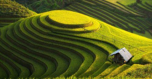 Ảnh đẹp Việt Nam-bộ ảnh về đất nước, con người bạn muốn khám phá