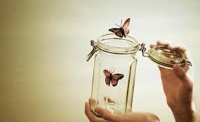 #555 bài thơ hay về cuộc sống ý nghĩa giúp bạn không ngừng nỗ lực