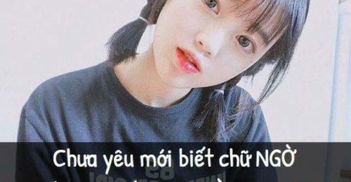 """[Cập Nhật] những câu nói hài hước trên Facebook nhận """"Bão"""" like"""