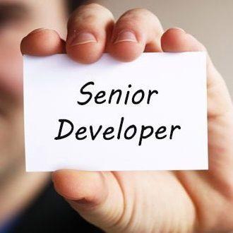 Senior là gì? Các kỹ năng mà Senior cần có