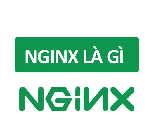 Tìm hiểu NGINX là gì và những tính năng nổi bật của chúng
